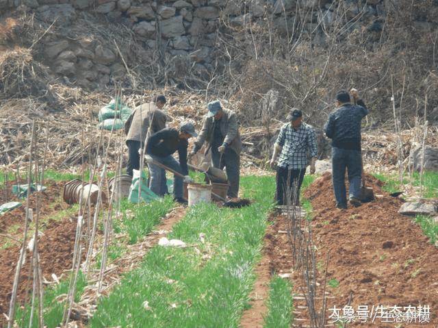 农业+手工业+旅游,农工结合的体验很新鲜